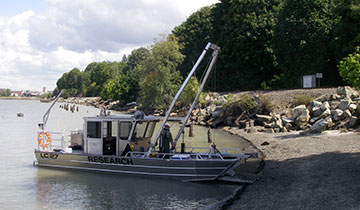 Sediment Sampling services